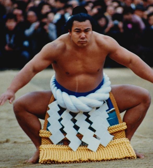 千代の富士貢の画像 p1_29
